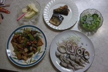 デザート、焼き物、サラダ、炒め物(煮物)、刺身、